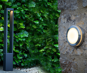 Dar outdoor wall and post light