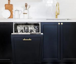Integrated dishwasher in black kitchen