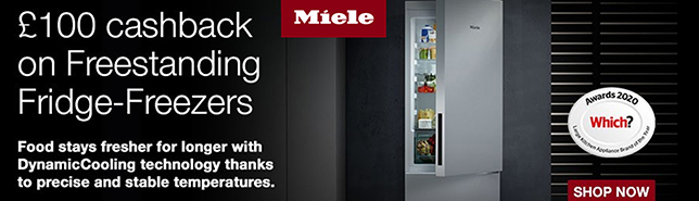fridge n
